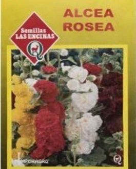 Semillas de Alcea Rosea
