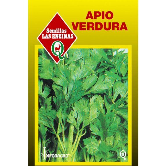Apio Verdura