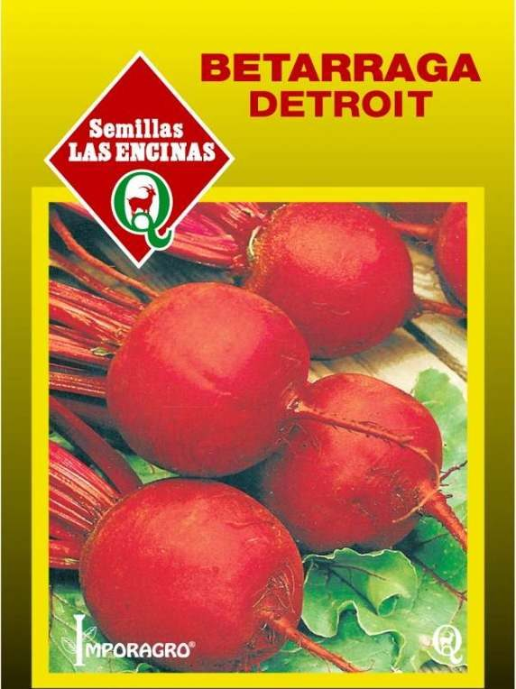 Betarraga Detroit dark Red