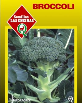 Semillas de Broccoli