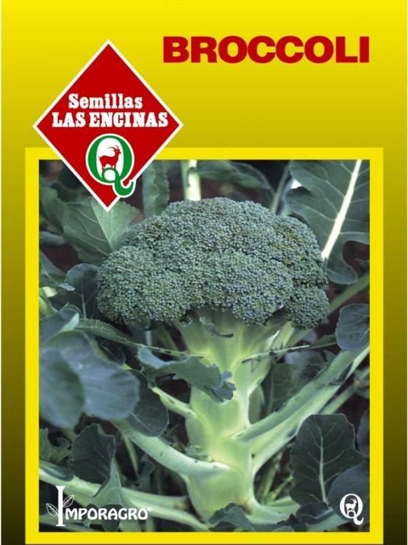 Broccoli Huertos Alma