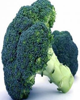 Broccoli Waltham 29 500 Grs