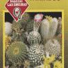 Cactus Variado