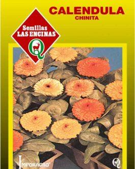Caléndula (Chinita)