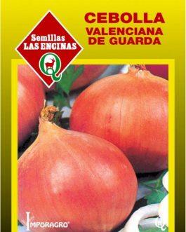 Semillas de Cebolla Valenciana de Guarda