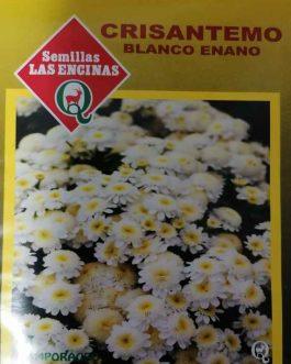 Semillas de Crisantemo