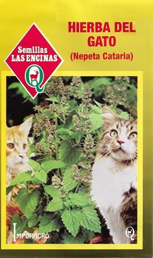 Hierba de gato