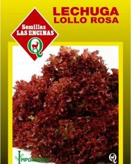 Lechuga Lollo Rossa Huertos Alma