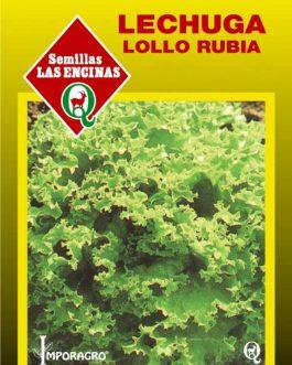 Semillas de Lechuga Lollo Bionda (Rubia)