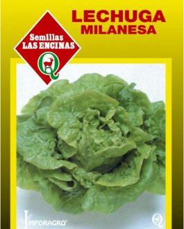 Lechuga Milanesa Las Encinas