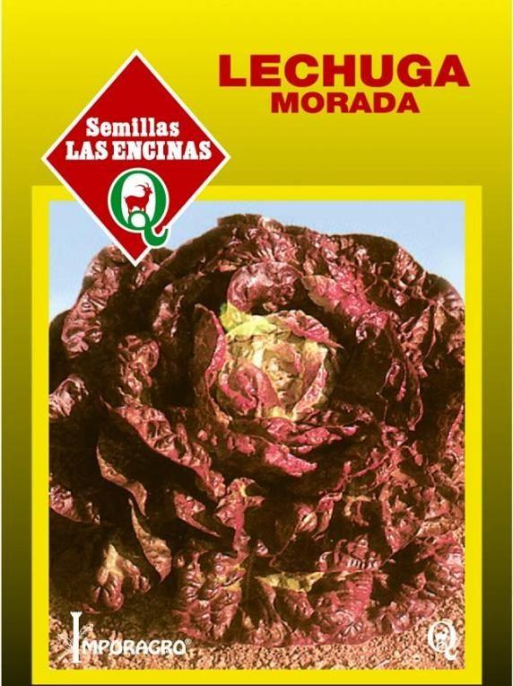 Lechuga Morada 4 Estaciones