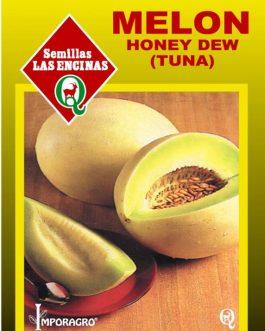 Semillas de Melón Tuna Honey Dew