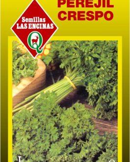 Semillas de Perejil Crespo