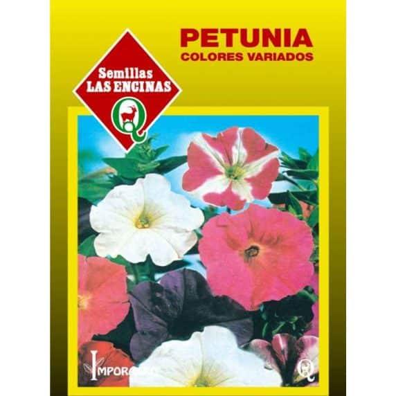 Petunia Huertos Alma