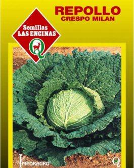 Semillas de Repollo Crespo Milán