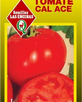 Tomate Cal – Ace