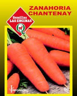 Semillas de Zanahoria Chantenay Red Cored