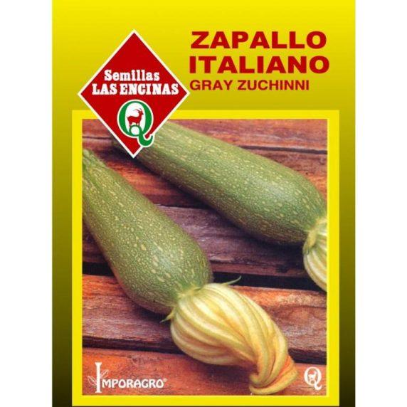 Zapallito Italiano Grey Zucchini