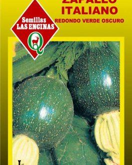 Semillas de Zapallo Italiano Redondo Bola 8