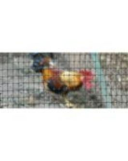 Malla Cerco Avicola 1,5×200 Mts Jardin Negra Cuadro 17×17 Mm