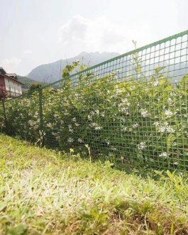 Malla Quadra Verde 20 Mm 1×5 Mts Jardín Y Protección