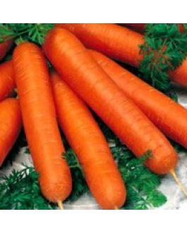 Semillas de Zanahoria Scarlet. Nantesa 500 Grs