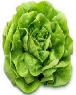 Lechuga Blanca de Boston 100 Grs