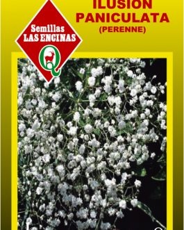 Semillas de Ilusión Paniculata