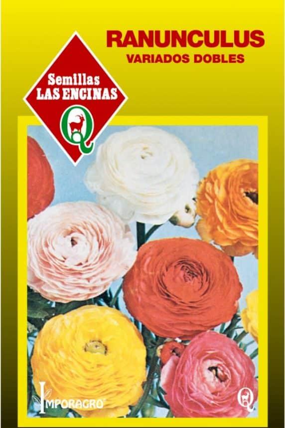 Semillas de Ranunculus Doble, Variado