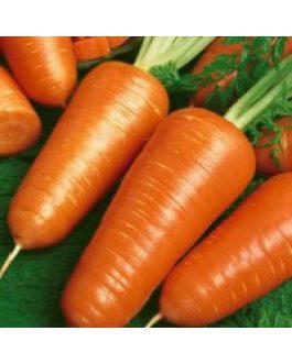 Zanahoria Royal Chantenay 500 Grs