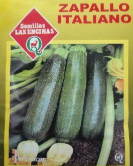 Zapallo Italiano