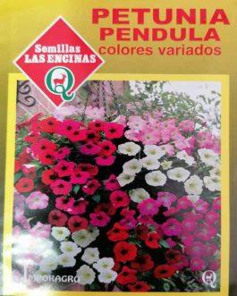 Semillas de Petunia Pendula Colores Variados