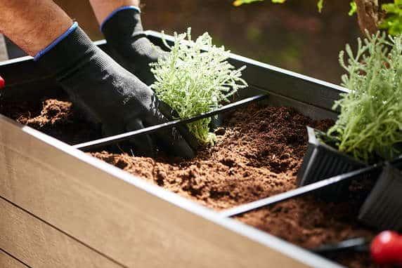 Kit de Mesa de Cultivo + 12 Plantines de Hortalizas