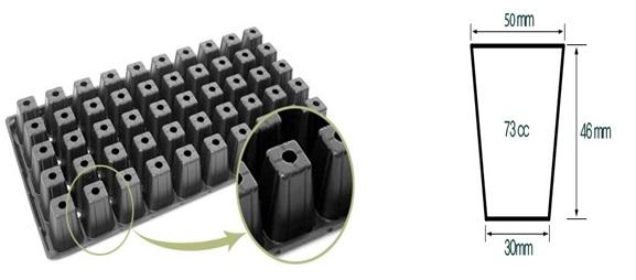 Bandeja Almaciguera de 50 Cavidades Negra Rígida 1 Unidad