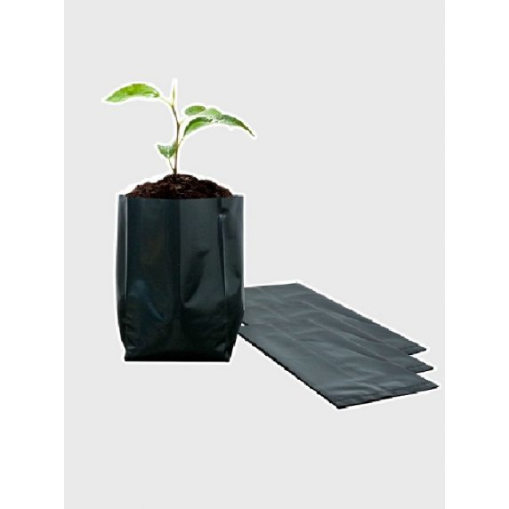 Bolsa Plástica para Almácigo y Plantas de 12x12 - 50 unidades 2