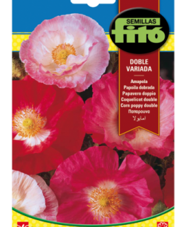 Fitó Flores Amapola Doble Variada