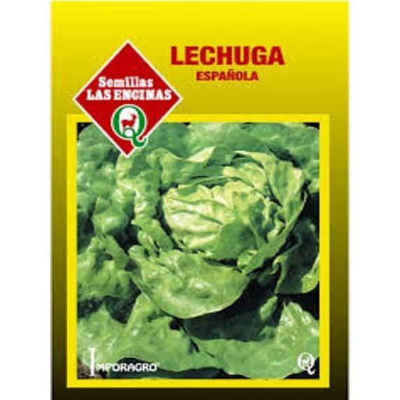 Lechuga Española