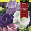 Fitó Flores Campanula Doble Variada