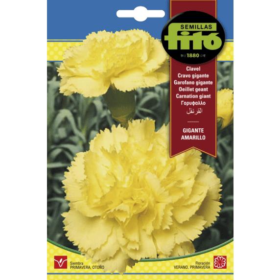 Fitó Flores Clavel Gigante Amarillo