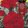 Fitó Flores Clavel Gigante Rojo