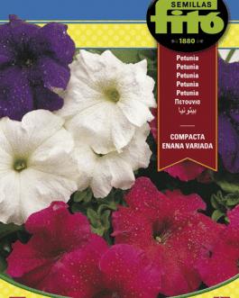 Semillas Fitó de Petunia Compacta Enana Variada