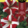 Semillas Fitó Petunia Compacta Enana Estrella Roja