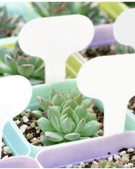Etiquetas Reutilizables Para Plantas y Flores 10 Unidades