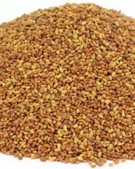 Semillas de Alfalfa California 55 Sin desinfectar