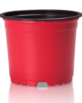Macetero VCG-12 Rojo