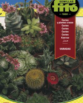 Semillas Fitó de Cactus y Plantas Crasas