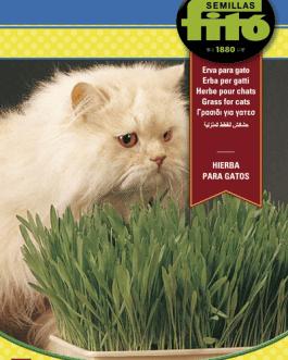 Semillas Fitó de Hierba de Gato