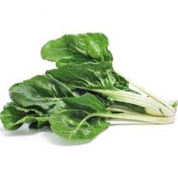 Semillas de Acelga Verde Penca Ancha Blanca 500 Grs