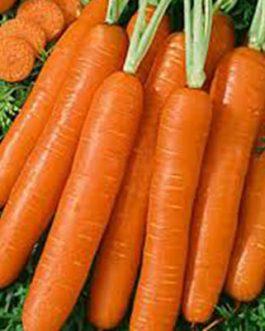 Semillas de Zanahoria Colmar 100 Grs