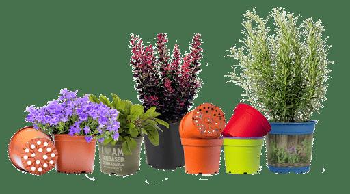 Macetas y jardineras para el interior de tu casa